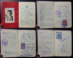 Yugoslavia C1928 Slovenia Croatia Vintage Expired Passport Revenue Stamps Canada Austria BP45 - Old Paper