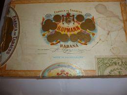 Boite à Cigares Carton De Hupman Habana - Unclassified