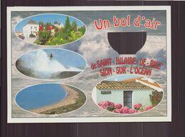 UN BOL D AIR DE SAINT HILAIRE DE RIEZ SION SUR L OCEAN 85 - Saint Hilaire De Riez