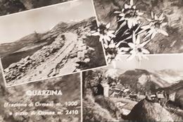 Cartolina - Quarzina ( Frazione Di Ormea ) E Pizzo Di Ormea - 1960 Ca. - Cuneo