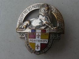 Très Bel Insigne Du 23ème Régiment D'infanterie De Forteresse France 1940 - Insegne