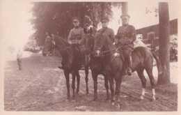 Armée Belge - Carte Photo - Groupe De Trois Cavaliers - Unité à Déterminer - Pas Circulé - BE - Regimente