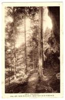 FAYMONT (88), VAL D'AJOL - Vallée Des Roches, Sentier Des Roches - France