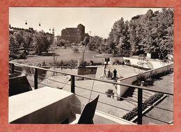 Gartenbau-Ausstellung, Panorama Der Kleinen Wallanlagen, Blumen, Motiv-SoSt, Nach Sulzburg 1963 (96527) - Non Classificati