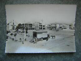 LE BARCARES - LA PLACE ET L'EGLISE - CAMION TRANSPORT DE CHEVAUX - Port Barcares