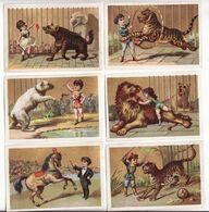Chromo  EPICERIE DAMIEN  à Cosne    Lot De 6    Cirque, Dompteur, Lion, Cheval, Ours, Tigre, Hyène Etc     10 X 7 Cm - Sin Clasificación