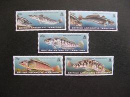 Territoire Antarctique Britannique: TB Série N° 302 Au N° 306, Neufs XX. - Britisches Antarktis-Territorium  (BAT)