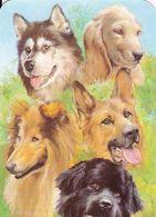 Portugal 2 Calendários   Cães  2002 - Kalender