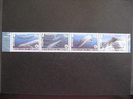 A).Territoire Antarctique Britannique: TB Bande N° 382 Au N° 385, Neufs XX. - Britisches Antarktis-Territorium  (BAT)
