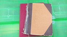 Lot N° TH 472 ALGERIE  Un Lot De 2 Classeurs Neufs X / Xx Et Obl. - Collezioni (in Album)
