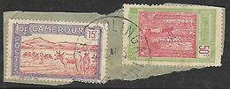CAMEROUN N°119 Et 134   Belle Oblitération De Akonolinga - Cameroun (1915-1959)