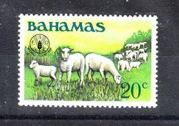 Bahamas   -  1981. Gregge Di Pecore. Flock Of Sheep. MNH - Altri