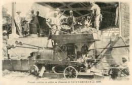 ORAN DOMAINE DE SAINT EUGENE SENECLAUZE PRESSOIR CONTINU EN ACTION EN 1909 - Oran