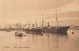 TRIESTE-PORTO STAZIONE TRANSALPINEI-CARTOLINA NON VIAGGIATA -ANNO 1910-1920- - Italy