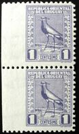 1927 URUGUAY Mnh VARIETY VARIETE- Vertical Pair Imperforated Left Edge - Bird Tero Teru Pajaro Ave Oiseau Vogel - Yv 334 - Uruguay