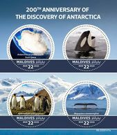 MALDIVES 2020 - Antarctica, Penguins. Official Issue [MLD200107a] - Pinguine