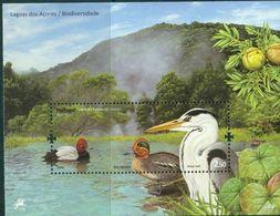Azores Portugal 2009, Yv. B39 Ducks Common Teal & Pochard, Canards Sarcelle D'hiver & Fuligule Milouin Grey Heron Cendré - Vögel