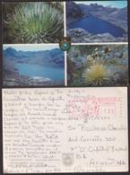 Venezuela - Circa 1970 - Tarjeta Postal - Laguna Santo Cristo - Sierra Nevada - Non Circulee - A1RR2 - Venezuela