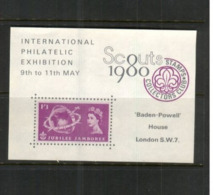 (stamps 7/8/2020) Scouts (cinderella Souvenir Mini-sheet) UK - Scout 1980 - Scouting