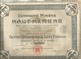 ACTION COMPAGNIE MINIERE DU HAUT MEKONG Elephant 100 FRANCS - Azioni & Titoli