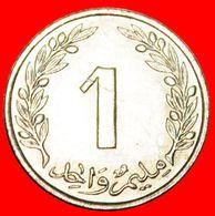 · OAK TREE: TUNISIA ★ 1 MILLIEME 1960 MINT LUSTER! LOW START ★ NO RESERVE! - Tunisia