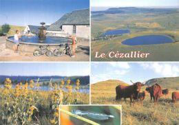 63-LE CEZALLIER-N°T1088-B/0069 - Frankreich