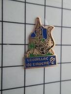 216b Pin's Pins / Beau Et Rare / THEME : VILLES / LEGUILLAC DE L'AUCHE EGLISE OIE 1992 - Steden