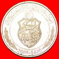 · SHIP (1996-2013): TUNISIA ★ 1/2 DINAR 1430-2009!LOW START ★ NO RESERVE! - Tunisia
