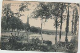 Hauts De  Seine :  CHAVILLE ; Le  Bois , L  étang - Chaville