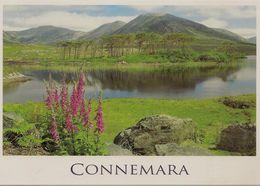 CPM Irlande, Connemara - Galway