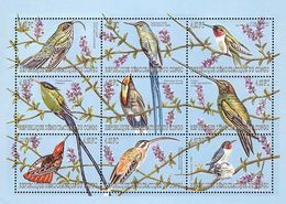 MDB-BK5-061 MINT ¤ CONGO 2000 9w In Serie ¤ TROPICAL BIRDS OF THE WORLD OISEAUX PAJAROS VOGELS VÖGEL HUMMINGBIRDS - Hummingbirds
