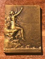 Superbe Médaille Bronze Plaque Henri Dubois Art Nouveau Attribuée à Fernand Soiron (1932 Auteur Compositeur Musique) - Profesionales / De Sociedad