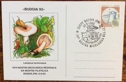 1993 BUDOIA XXVI MICOLOGICA MOSTRA XIX MOSTRA FILATELICA / Mushroom Pilze - Hongos