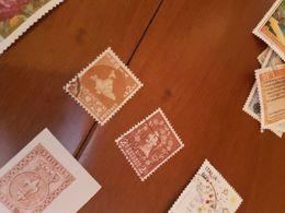 INDIA CARTA GEOGRAFICA  MARRONE  1 VALORE - Briefmarken
