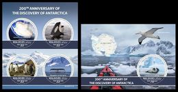 Maldives. 2020 200th Anniversary Of The Discovery Of Antarctica. Penguins. (0107ab)  OFFICIAL ISSUE - Stamps