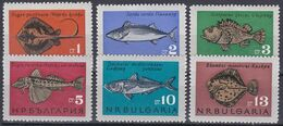 Tr_ Bulgarien 1965 - Mi.Nr. 1542 - 1547 - Postfrisch MNH - Tiere Animals Fische Fishes - Poissons