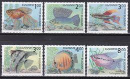 Tr_ Bulgarien 1993 - Mi.Nr. 4049 - 4054 - Postfrisch MNH - Tiere Animals Fische Fishes - Poissons