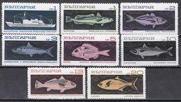 Tr_ Bulgarien 1969 - Mi.Nr. 1947 - 1954 - Postfrisch MNH - Tiere Animals Fische Fishes - Poissons