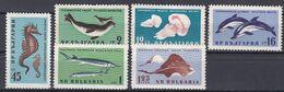 Tr_ Bulgarien 1961 - Mi.Nr. 1243 - 1248 - Postfrisch MNH - Tiere Animals Fische Fishes - Poissons