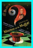A747 / 509 41 - BLOIS Maison De La Magie - Blois