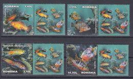 Tr_ Rumänien 2012 - Mi.Nr. 6625 - 6628 - Postfrisch MNH - Tiere Animals Fische Fishes - Poissons
