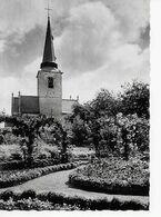 Meise  De Sint-Martinuskerk  L'Eglise Saint-Martin (XVI° Eeuw) - Meise