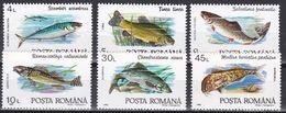 Tr_ Rumänien 1992 - Mi.Nr. 4776 - 4781 - Postfrisch MNH - Tiere Animals Fische Fishes - Poissons