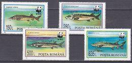 Tr_ Rumänien 1994 - Mi.Nr. 5034 - 5037 - Postfrisch MNH - Tiere Animals Fische Fishes - Poissons