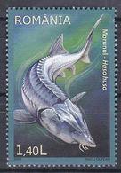 Tr_ Rumänien 2009 - Mi.Nr. 6382 - Postfrisch MNH - Tiere Animals Fische Fishes - Poissons