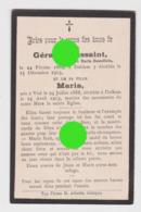 Dalhem1913 Décès De Mme Gérard Toussaint Née Maria Demollein Et Sa Fille Maria - Avvisi Di Necrologio