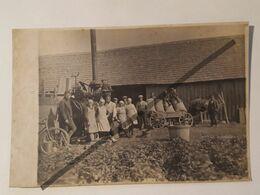 Photo Vintage .. Original. Agriculture. Machine à Vapeur. Cheval Avec Une Charrette. Vélo. Lettonie D'avant-guerre - Métiers