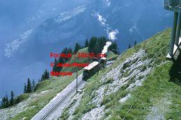 Reproduction Photographie D'une Vue Panoramique D'une Locomotive VapeurBOB à Crémaillère SPB Schynige Platte-Bahn 1972 - Riproduzioni