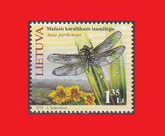 Lithuania 2010, Dragonfly Libellule Libélula Großlibelle MNH ** - Insectes