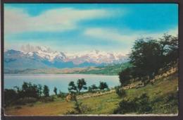 Chile - Postcard - Pino De Ovejas En Laguna Azul - Ultima Esperanza - Magallanes - 1964 - Non Circulee - A1RR2 - Chile